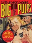 Index bigpulps