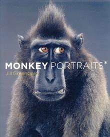 Medium monkey portraits