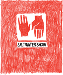 Index saltwatersnowcover