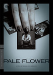 Index_paleflower